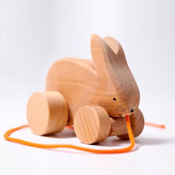 ארנב נגרר