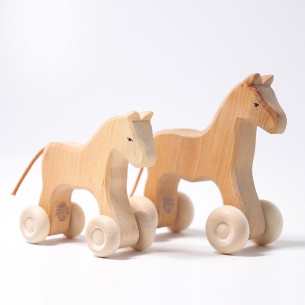 שני גדלי הסוס