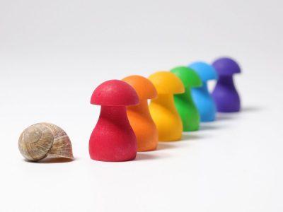 פטריות צבעוניות